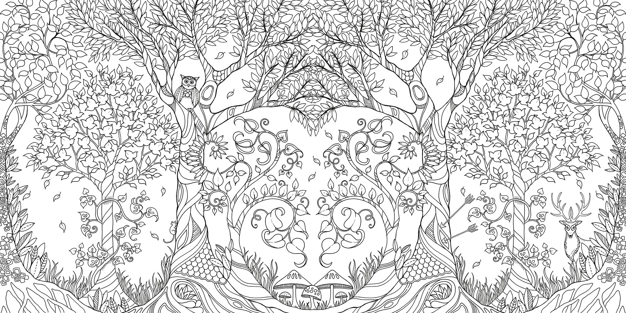 Enchanted Forest Coloring Book Ca Colouring Page G
