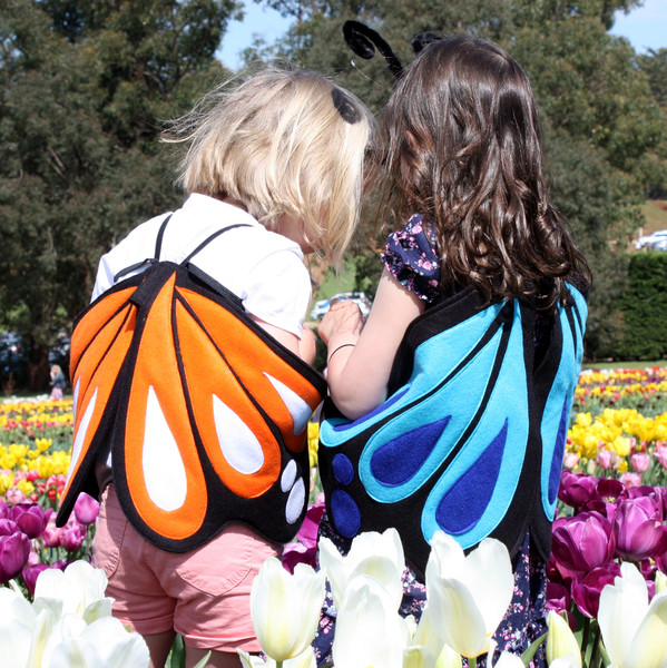 Kids Costumes Butterfly Costume Blue Ulysses and Orange Monarch