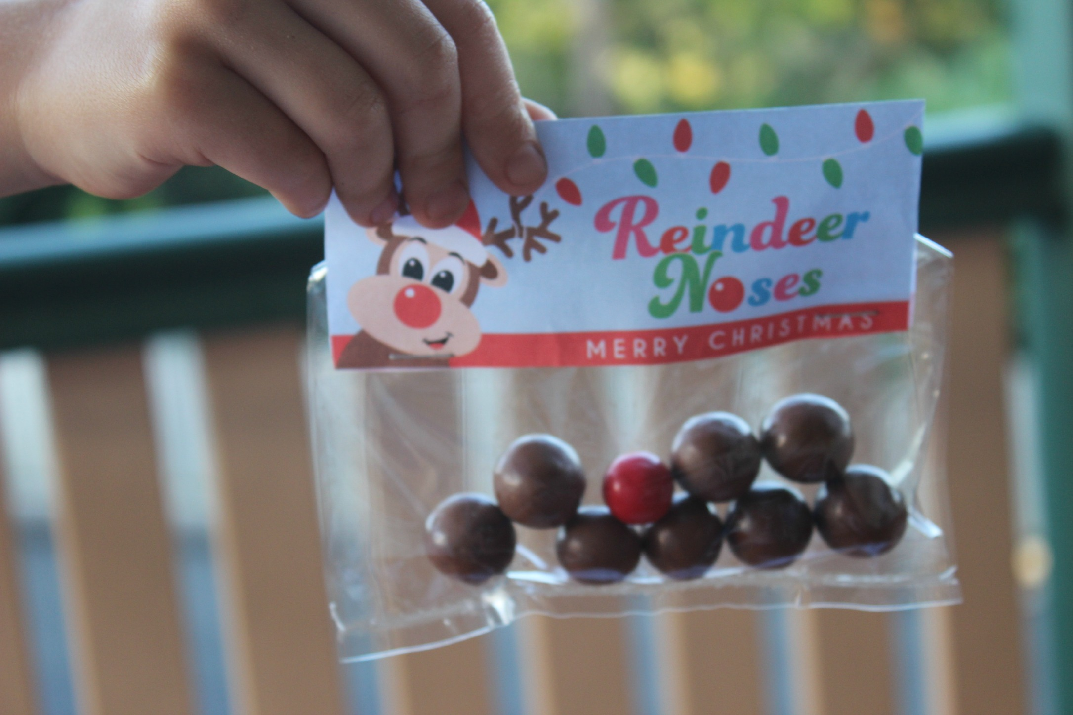 reindeer-noses-free-printable-from-finlee-and-me