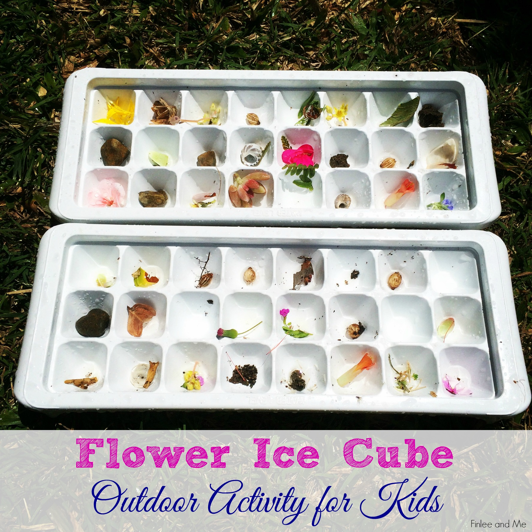 Flower Ice Cubes Outdoor Activities for Kids