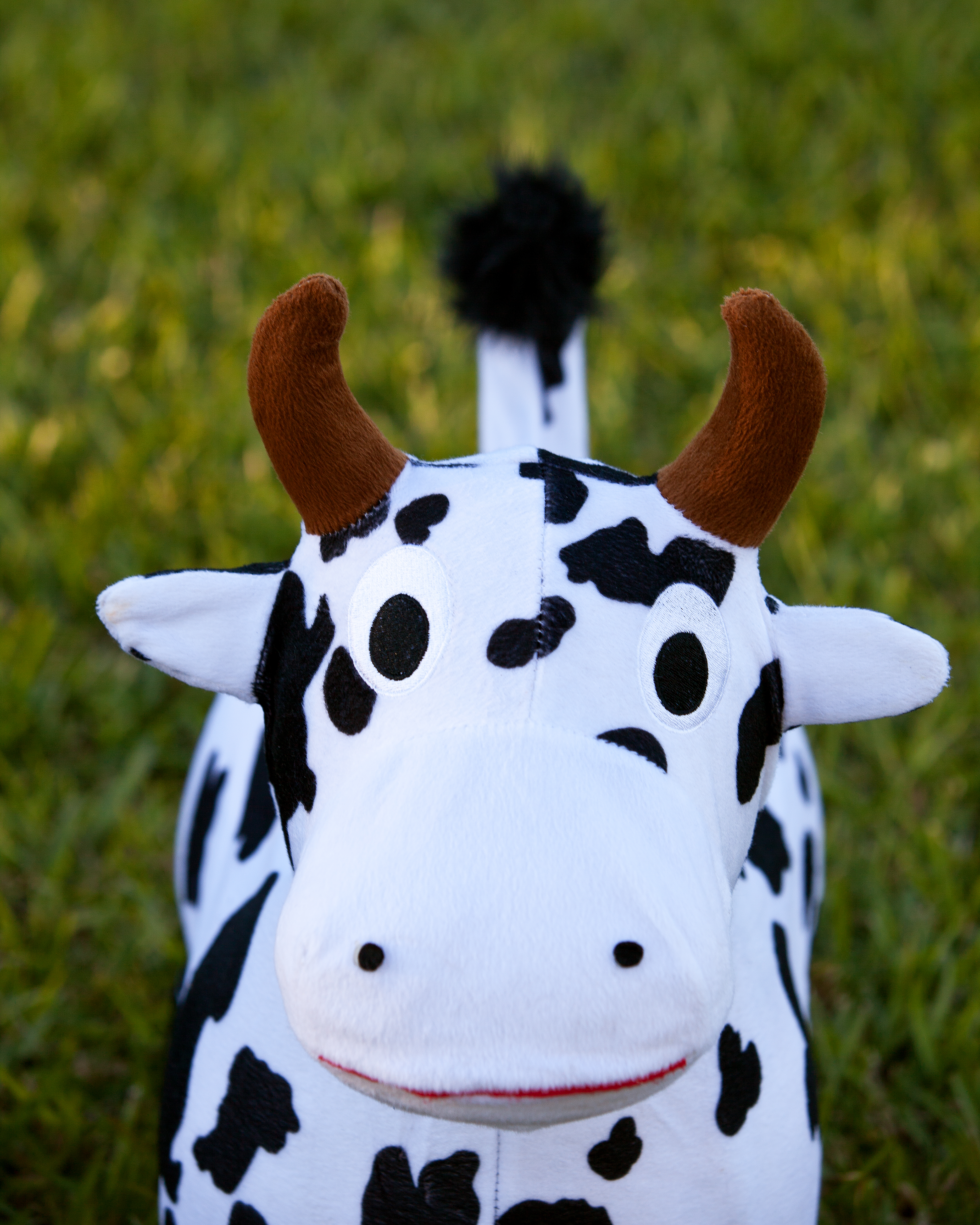 zooba-fitball-for-kids-cow