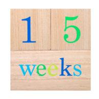 wooden-milestone-blocks-weeks