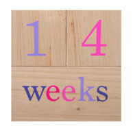 wooden-milestone-blocks-weeks