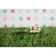 car-and-caravan-earrings-green