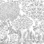 enchanted-forest-colouring-book