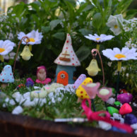 spotted-house-fairy-garden-kit