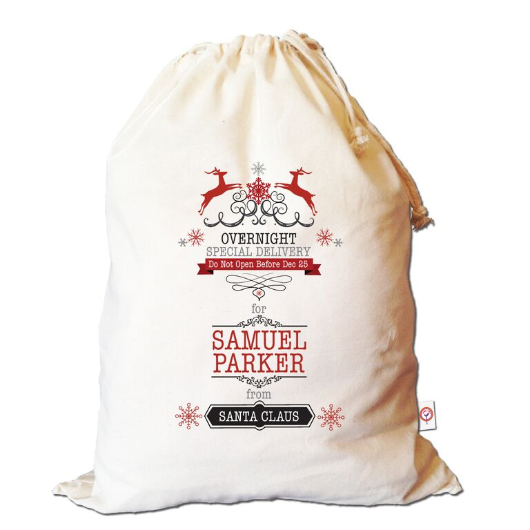 overnight-special-delivery-santa-sack