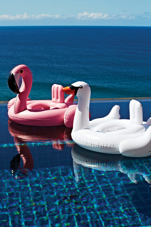 Beautiful SunnyLife Inflatable Pool Toys Baby Swan